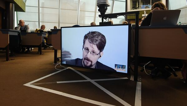 Former US National Security Agency (NSA) contractor and whistle blower Edward Snowden speaks via video link from Russia as he takes part in a round table meeting on the subject of Improving the protection of whistleblowers on March 15, 2019, at the Council of Europe in Strasbourg, eastern France - Sputnik France