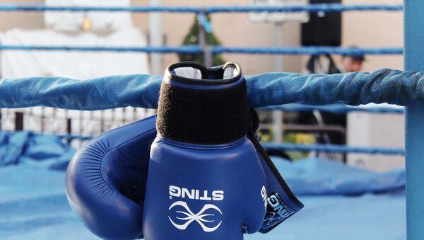 Gants de boxe - Sputnik France