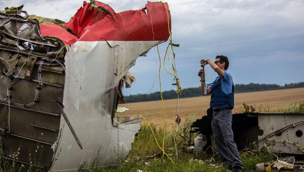 Des experts de l'OSCE sur les lieux du crash d'un Boeing 777 de Malaysia Airlines dans le Donbass (juillet 2014) - Sputnik France