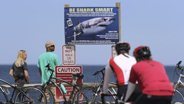 Un panneau de signalisation sur une plage du cap Cod avertissant contre la possible présence de requins dans les eaux - Sputnik France