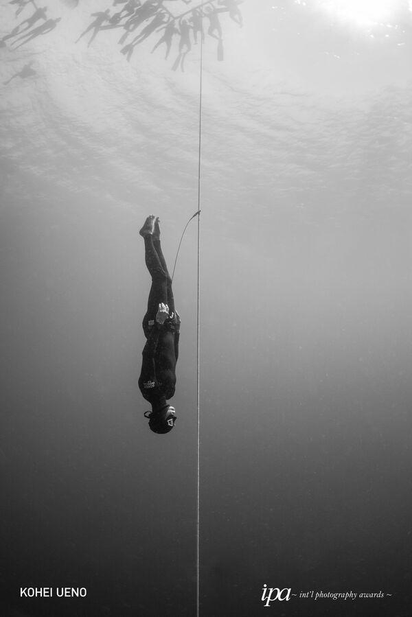 Les lauréats du concours International Photography Awards 2019  - Sputnik France