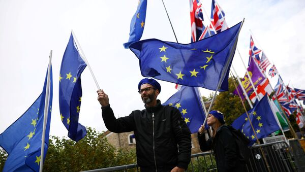 Anti-Brexit protesters demonstrate outside the Houses of Parliament in London, Britain, October 17, 2019 - Sputnik France