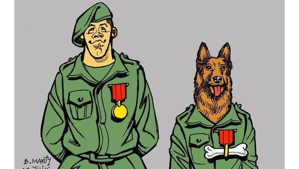 Le «chien héros» de l'armée US invité à la Maison-Blanche? - Sputnik France