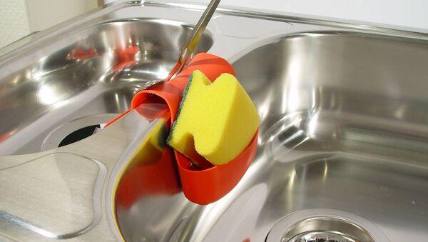 Éponge à vaisselle - Sputnik France