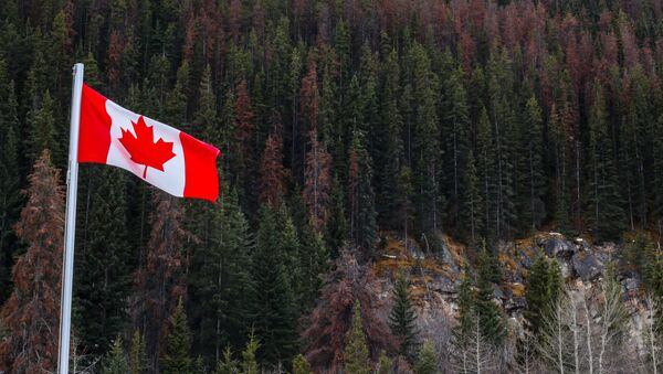 Drapeau canadien en Alberta - Sputnik France