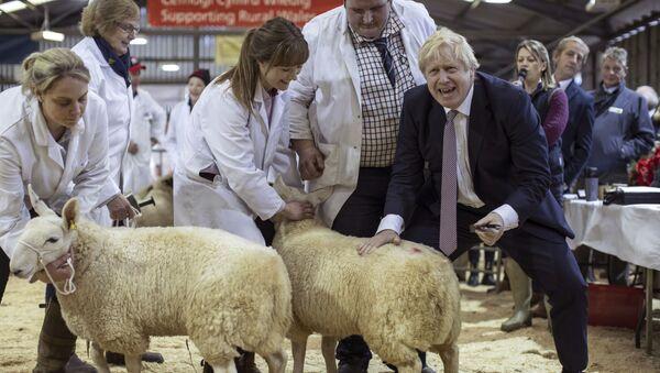 Премьер-министр Великобритании Борис Джонсон посетил выставку округа Уэльс в Лланельведде, Уэльс - Sputnik France