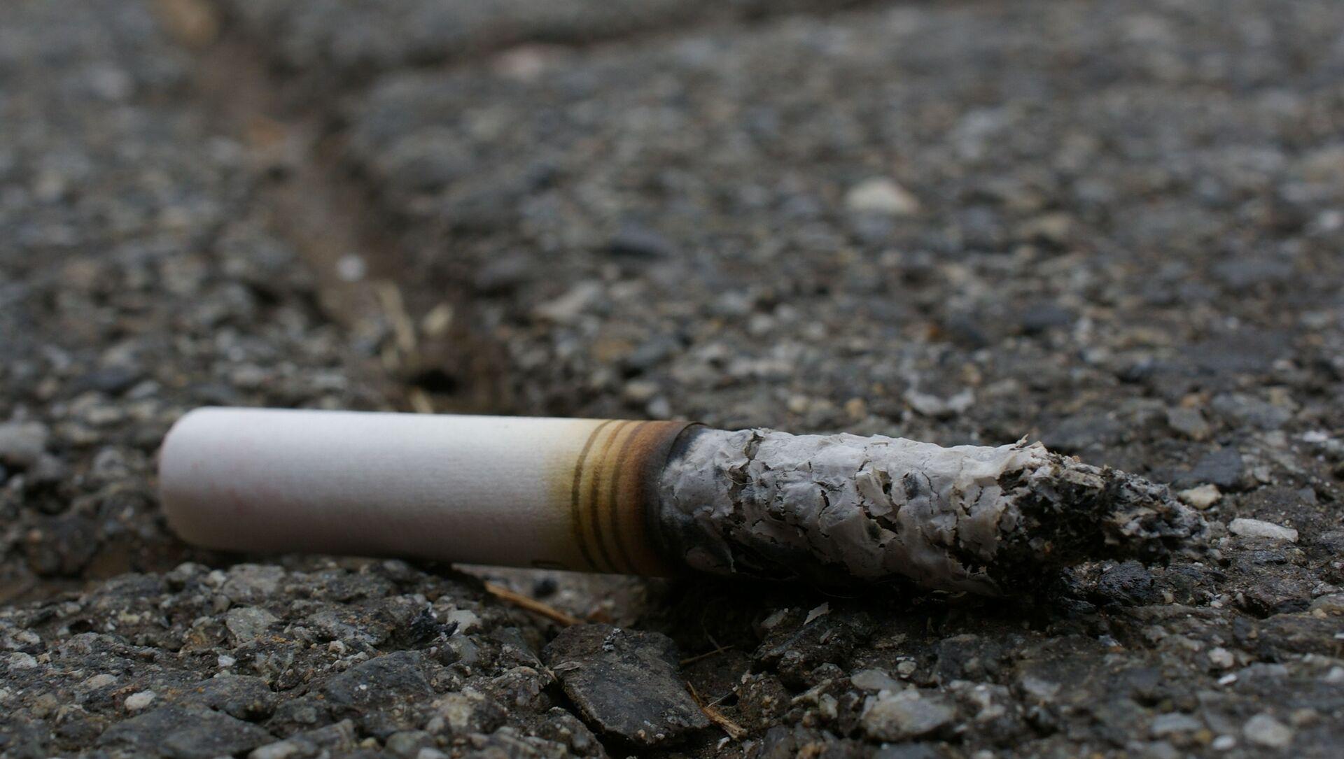 Un mégot de cigarette - Sputnik France, 1920, 06.08.2021