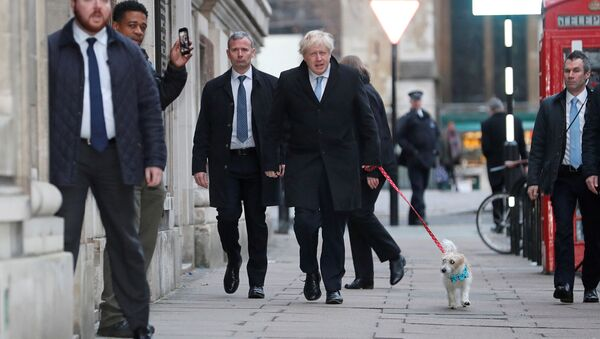 Britain's Prime Minister Boris Johnson arrives with his dog Dilyn at a polling station at the Methodist Central Hall to vote in the general election in London, Britain, December 12, 2019 - Sputnik France