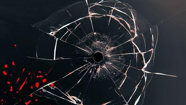 Trace d'une balle dans la vitre - Sputnik France