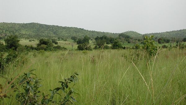 Sahel savanna in SW Burkina Faso, near Gbomblora on the road from Gaoua to Batié. - Sputnik France