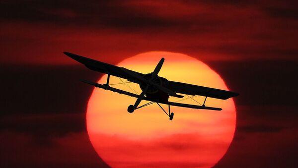 Petit avion  - Sputnik France
