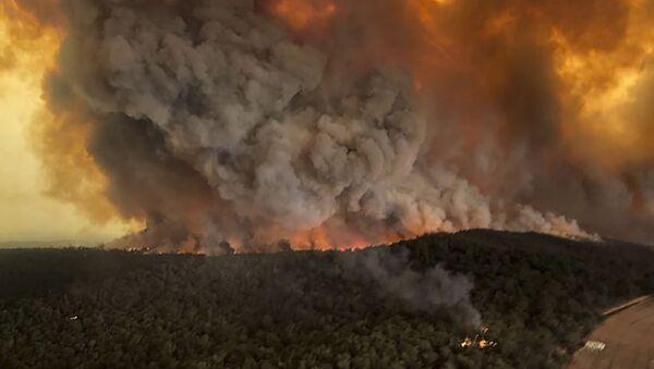 Les incendies en Australie - Sputnik France