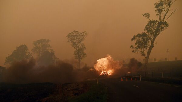 les incendies de forêts en Australie, le 5 janvier 2020 - Sputnik France