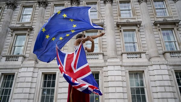 An anti-Brexit demonstrator whirls an EU and Union Flag during a demonstration against the British government's move to suspend parliament in the final weeks before Brexit outside Downing Street in London on August 31, 2019. - Sputnik France