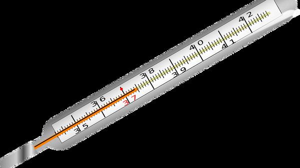 Un thermomètre médical - Sputnik France