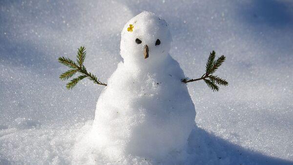 Bonhomme de neige - Sputnik France