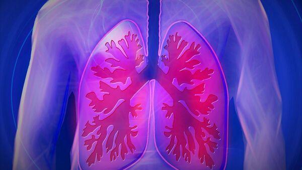 Les poumons - Sputnik France
