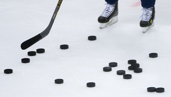 Kontinental Hockey League. Dynamo Moscow vs. SKA - Sputnik France