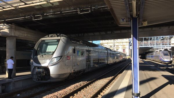 Un train TER  - Sputnik France