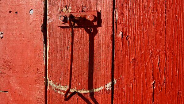Une porte (image d'illustration) - Sputnik France