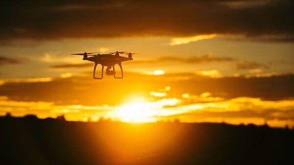 Un drone dans le ciel - Sputnik France