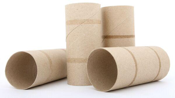Papier toilette (image d'illustration) - Sputnik France