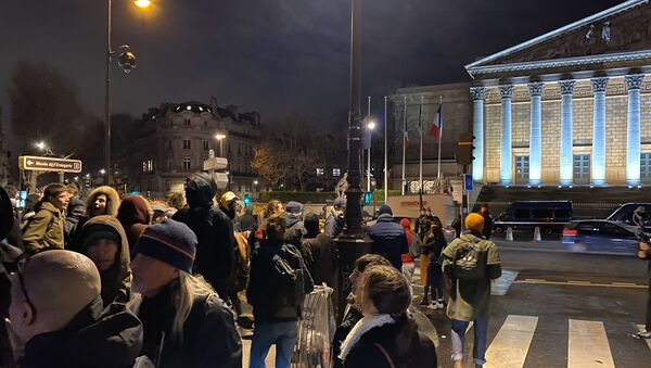 Manifestants devant l'Assemblée nationale à la suite du recours à l'article 49.3 - Sputnik France