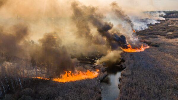 Feu de forêt à Tchernobyl: les flammes approchent de la centrale nucléaire   - Sputnik France