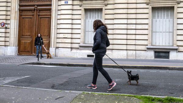 Des femmes promènent leurs chiens pendant le confinement à Paris - Sputnik France
