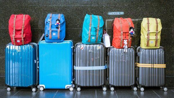 Des valises - Sputnik France