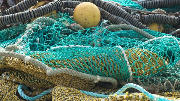 Filets de pêche - Sputnik France
