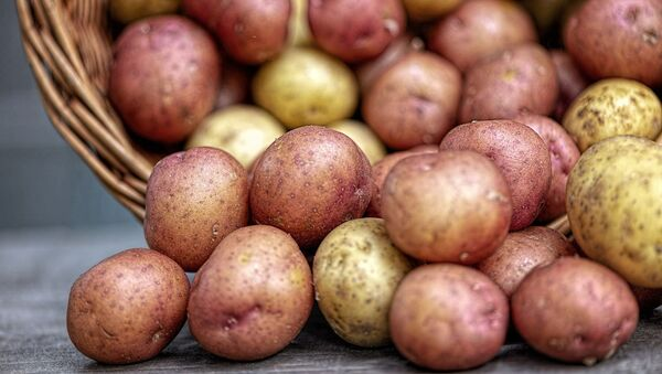 pommes de terre (image d'illustration) - Sputnik France