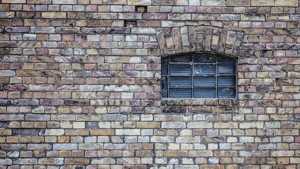 Mur en brique (image d'illustration) - Sputnik France