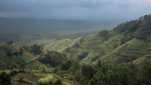 Le parc national des Virunga, au nord-ouest de la RDC. - Sputnik France