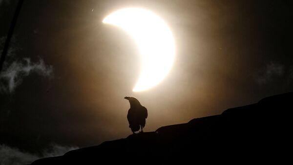 L'éclipse solaire annulaire vue depuis différents pays   - Sputnik France