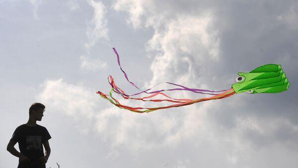 Un cerf-volant  - Sputnik France