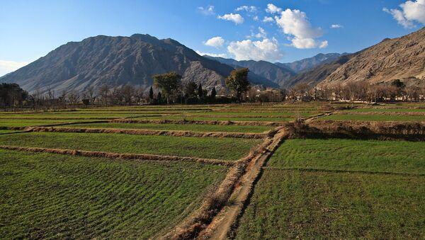 Afghanistan, province de Kounar - Sputnik France