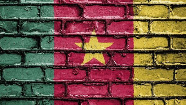 Le drapeau du Cameroun - Sputnik France