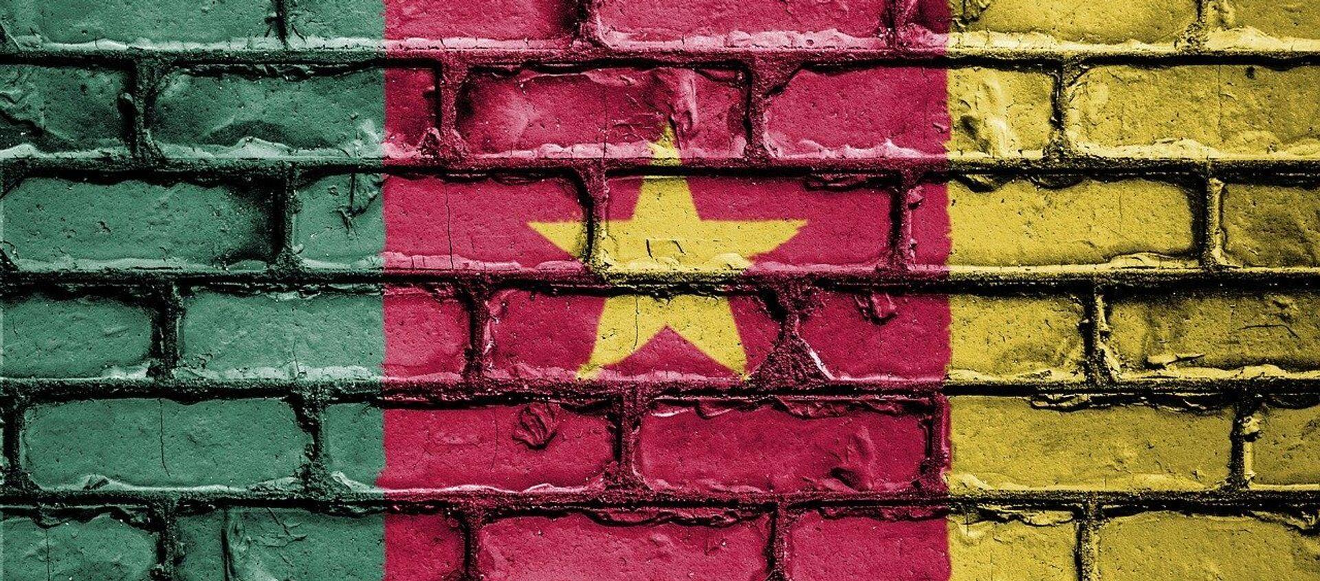 Le drapeau du Cameroun - Sputnik France, 1920, 24.11.2020