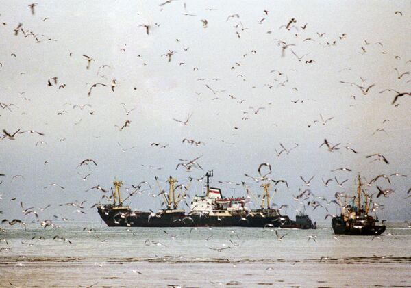 Gaza: Israël rétablit la zone de pêche autorisée aux Palestiniens - Sputnik France