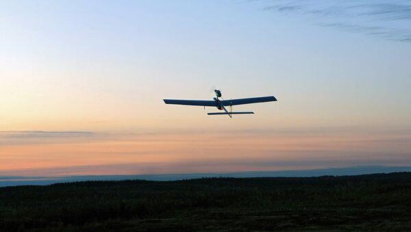 Беспилотный летательный аппарат (БПЛА) - Sputnik France