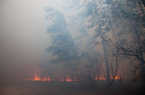 Incendies en RussieIncendies en Russie - Sputnik France