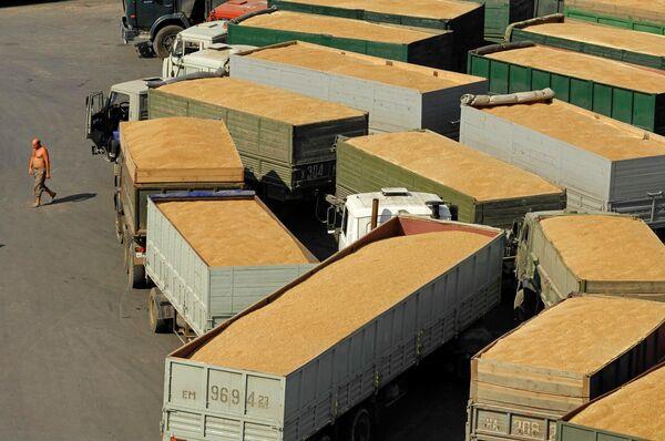 Gel des exportations ukrainiennes de blé: pas de décision définitive - Sputnik France