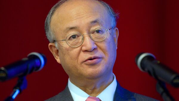 Yukiya Amano, directeur général de l'AIEA - Sputnik France