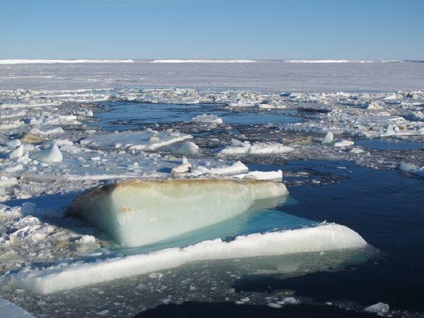 Antarctique: la superficie de la glace à un maximum record - Sputnik France