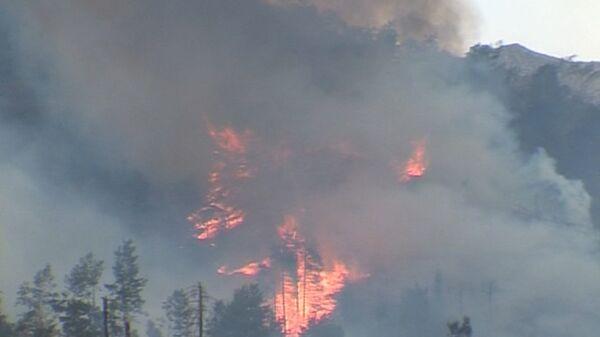 Un parc national kazakh en flammes près d'Almaty - Sputnik France