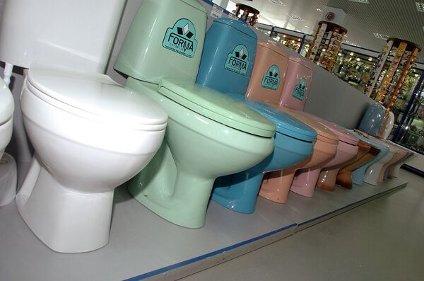 L'ONU institue la Journée mondiale des toilettes - Sputnik France