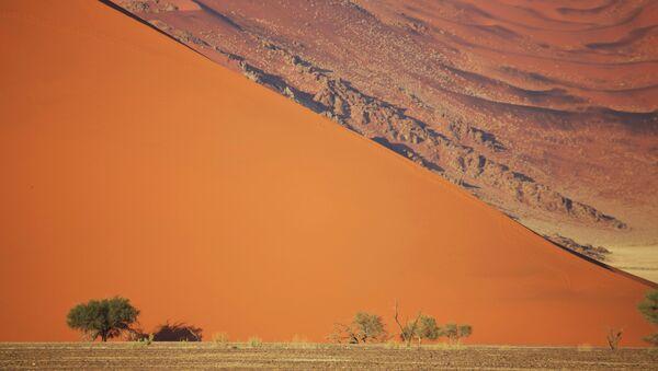 Dans le Namib - Sputnik France