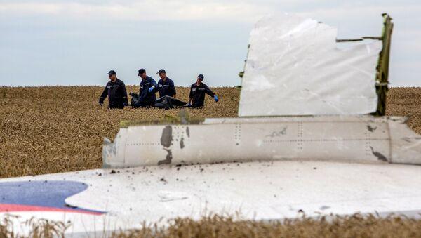 Ukraine/Boeing: 251 corps retrouvés (officiel) - Sputnik France