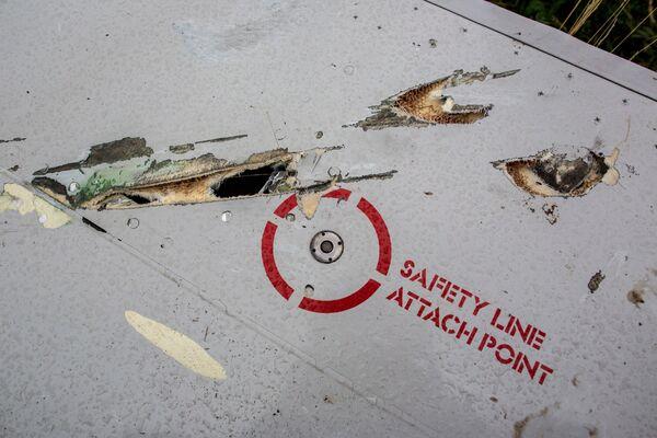 Crash du MH17: les photos d'un satellite US incriminent Kiev (expert américain) - Sputnik France